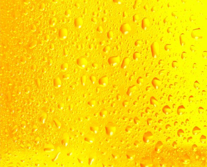 Asiaticos_Tolerancia_Alcohol_Mitos_Ciencia_Maria_Iranzo_Biotecnologia